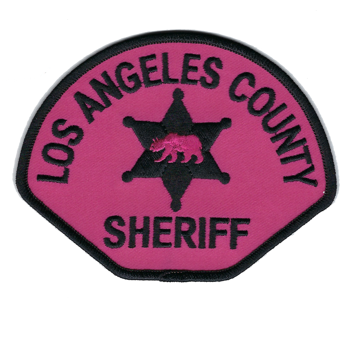 LASD PPP 2018.png