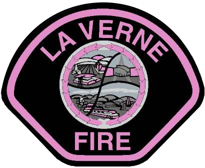 LVFD Pink Patch.png