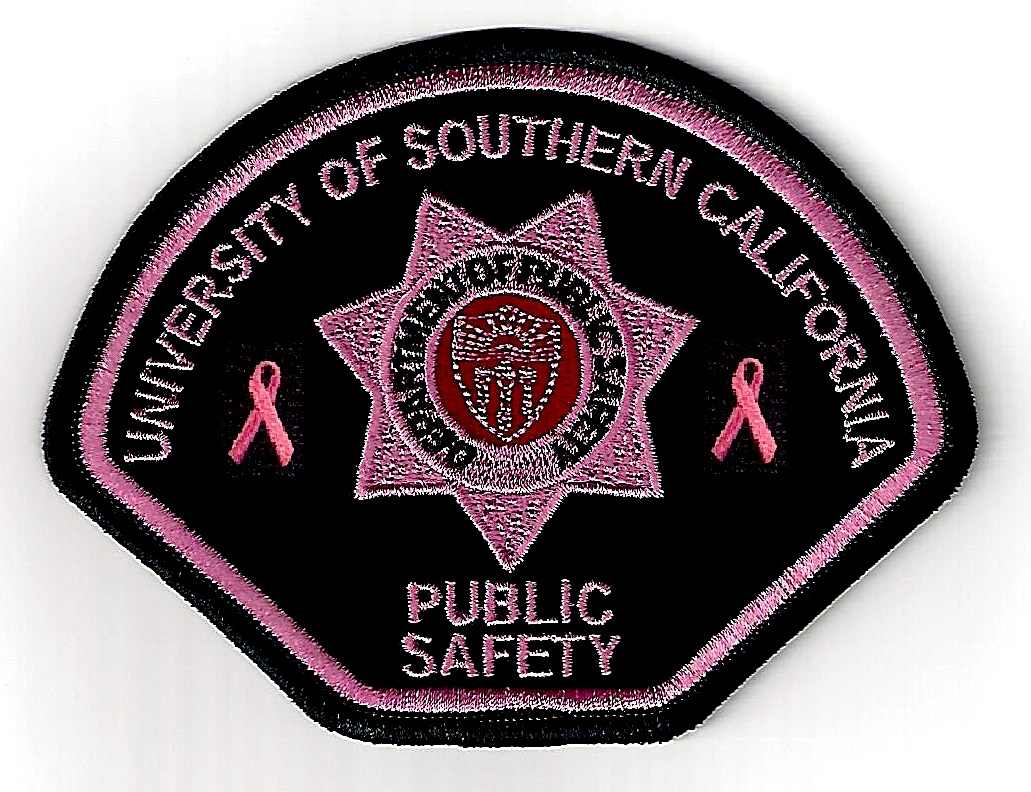 Pink Patch Project Fact Sheet - Media.jpg