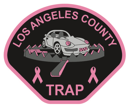 TRAP Pink Patch.jpg